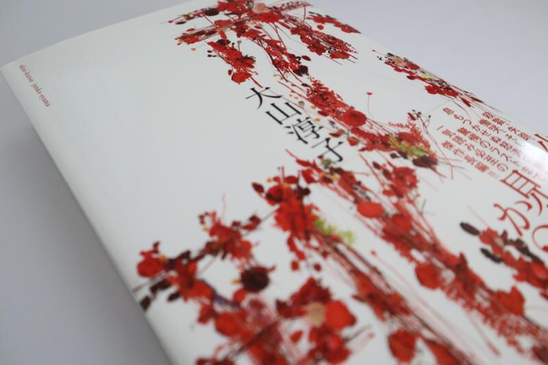 『赤い靴』大山淳子 / 巌窟王を彷彿とさせる物語がここに!