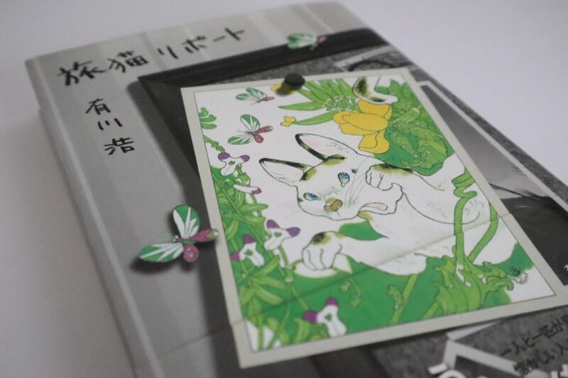 『旅猫リポート』有川浩【あらすじ/感想】愛しい人々に笑顔をもたらす物語